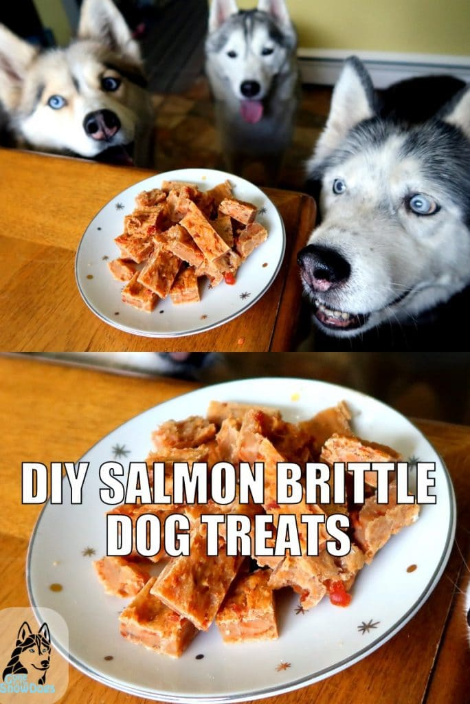 DIY Salmon Brittle Dog Treats