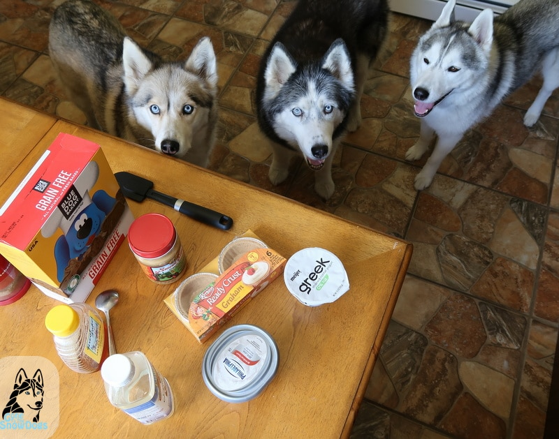 DIY Peanut Butter Pie for Dogs