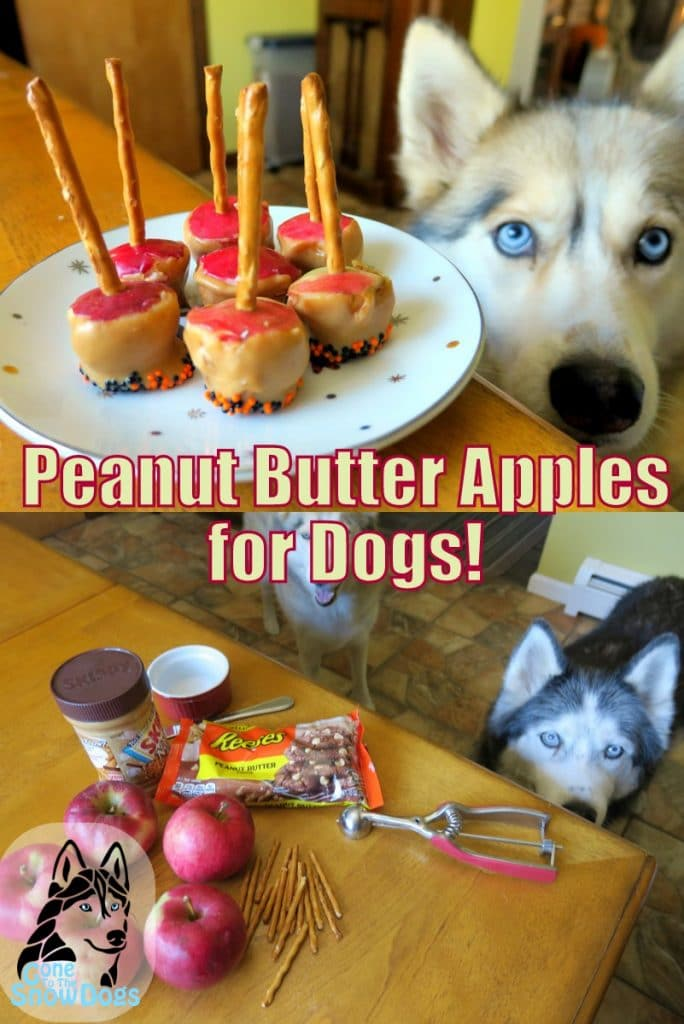Halloween Peanut Butter Apple Dogs Treats