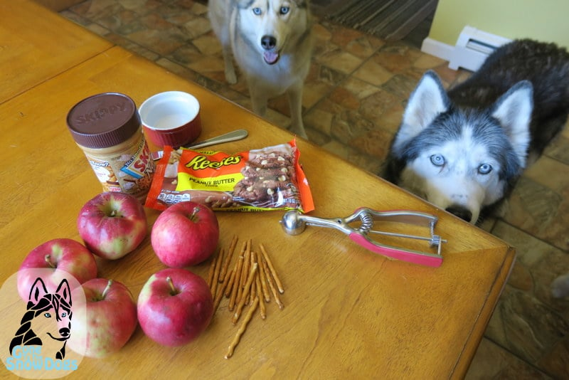 Halloween Dog Treats Caramel Apples for Dogs