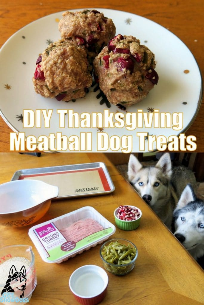 DIY Thanksgiving Dog Treats
