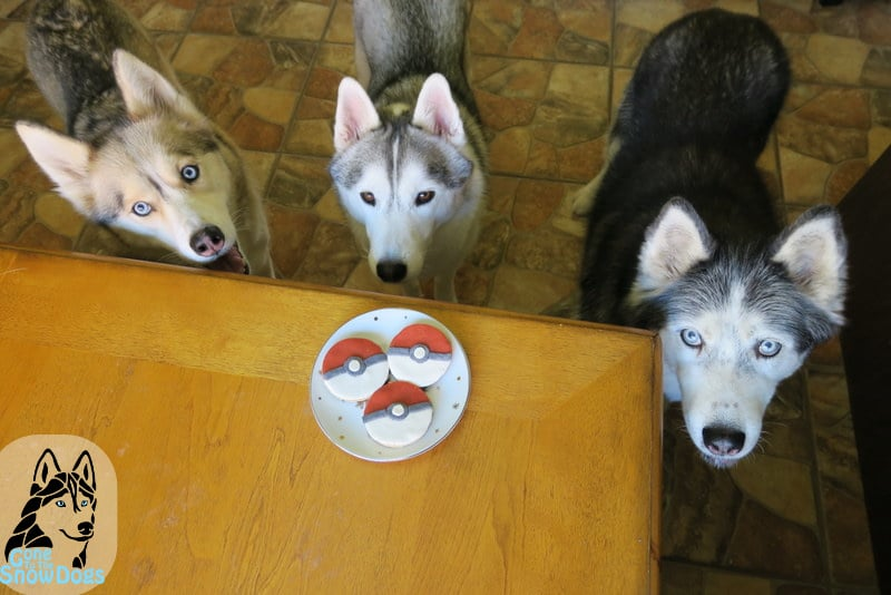DIY Pokeball Dog Treats