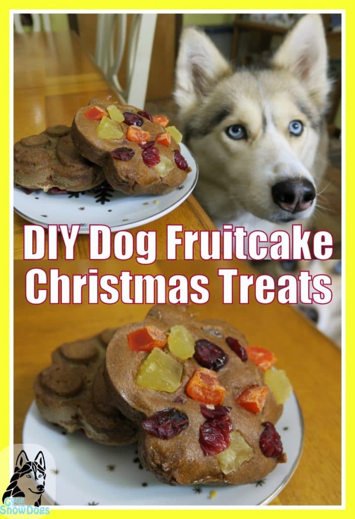 DIY Dog Fruitcake