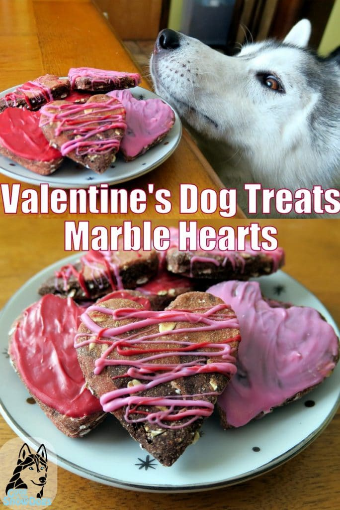 Valentine's Dog Treats DIY