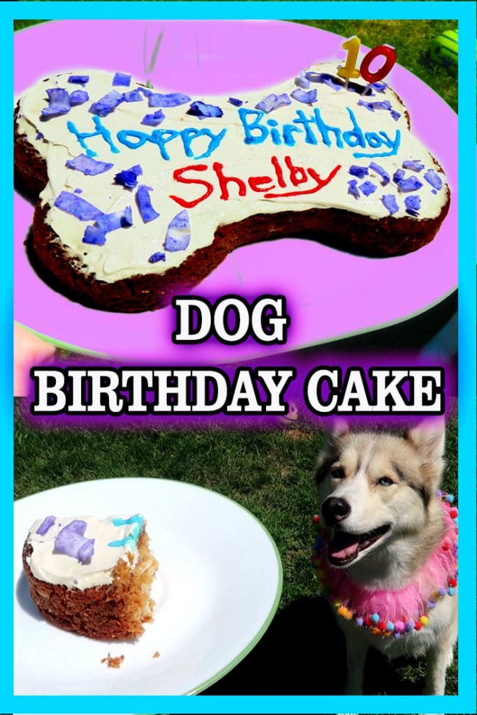 Diy Dog Birthday Cake Diy Dog Treats Gone To The Snow Dogs