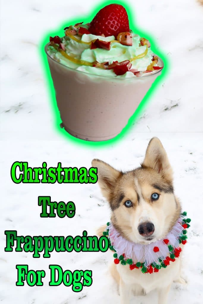 Christmas Tree Frappuccino for Dogs