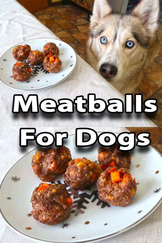 Homemade Meatballs for Dogs