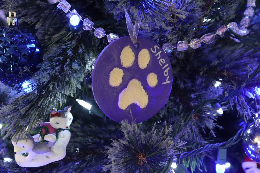 DIY Salt Dough Paw Print
