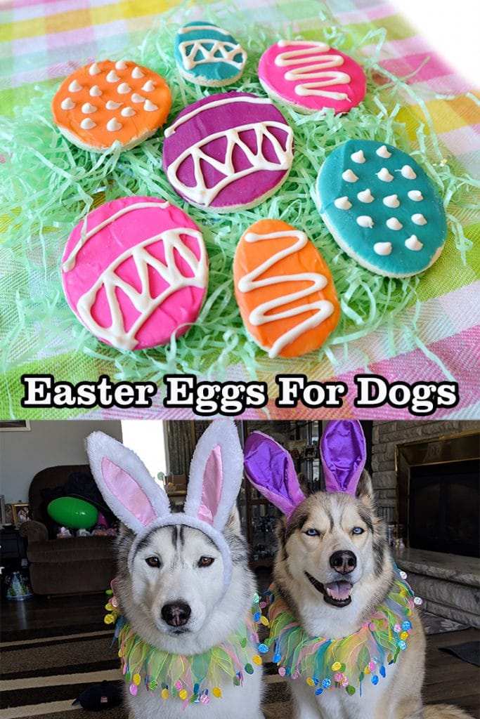 Easter Cookies for Dogs